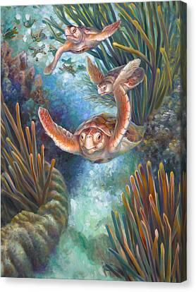Loggerhead Sea Journey IIi Canvas Print by Nancy Tilles