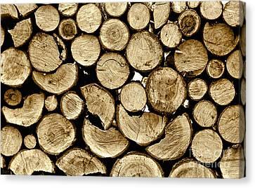 Logs Canvas Print by Jeff Breiman