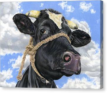 Cow Canvas Print - Lola by Sarah Batalka