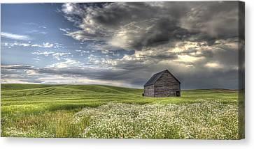 Contour Farming Canvas Print - Lone Barn  by Latah Trail Foundation