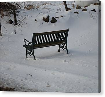 Lone Bench Canvas Print by Jenna Mengersen
