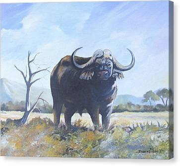 Canvas Print featuring the painting Lone Bull by Anthony Mwangi