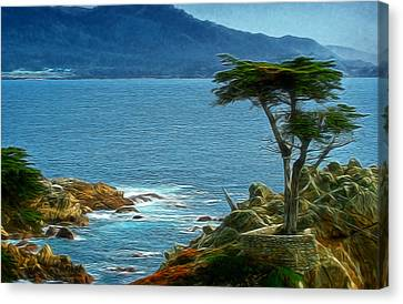 Lone Cyprus Digital Art Canvas Print by Ernie Echols