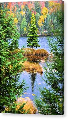 Branch Hill Pond Canvas Print - Lone Fir Tree Autumn by Henry Kowalski