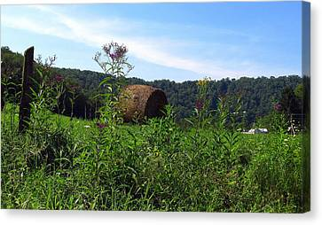 Lone Hay Round Canvas Print by Willy  Nelson