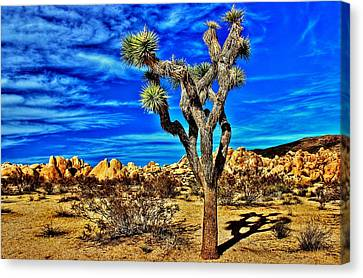 Canvas Print featuring the photograph Lone Joshua by Benjamin Yeager
