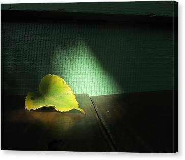 Canvas Print featuring the photograph Lone Leaf by Paul Foutz