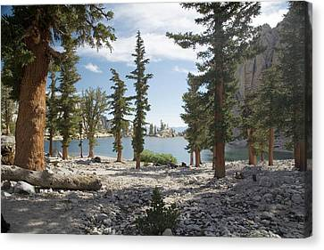 Lone Pine Lake Shoreline Canvas Print by Jim West