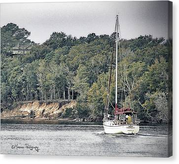 Lone Sailor In Snow's Cut Canvas Print by Phil Mancuso