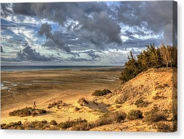 Lone Stroller On A Vast Beach Under Dramatic Sky Canvas Print by Julis Simo