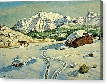 Lone Tracker Canvas Print by Paul Krapf