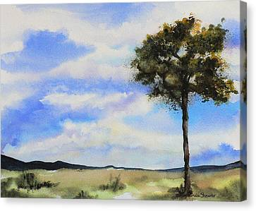 Lone Tree Colorado Canvas Print