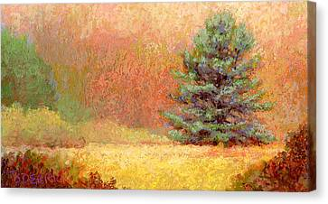 Lone White Pine II Canvas Print