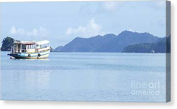 Lonely Boat Canvas Print by Andrea Anderegg