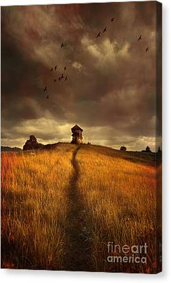 Lonely House On The Hill Canvas Print by Jaroslaw Blaminsky