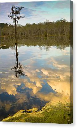 Lonely Reflection Canvas Print by Denis Lemay