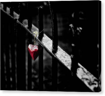 Lonely Canvas Print by Richard Bland