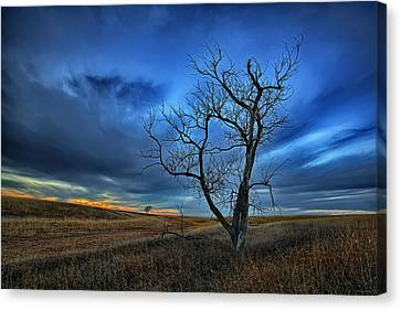 Lonely Sentinel Canvas Print by Thomas Zimmerman