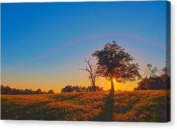 Canvas Print featuring the photograph Lonely Tree On Farmland At Sunset by Alex Grichenko