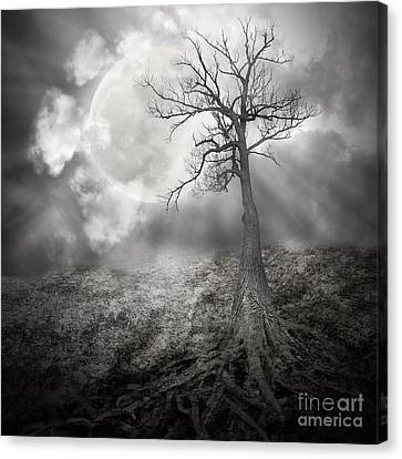 Lonely Tree With Roots Holding The Moon Canvas Print by Angela Waye
