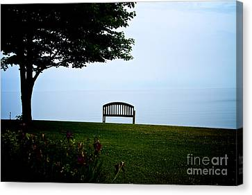 Lonesome Bench Canvas Print by William Norton