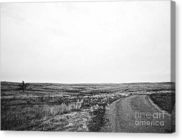 Canvas Print featuring the photograph Lonesome Highway No.1 by Lennie Green