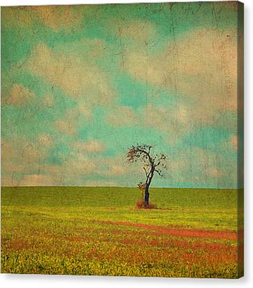 Lonesome Tree In Lime And Orange Field And Aqua Sky Canvas Print by Brooke T Ryan