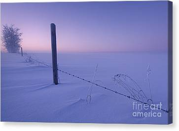Lonesome Winter Canvas Print by Dan Jurak
