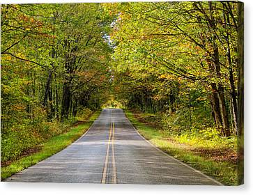 Long And Winding Road   2 Canvas Print