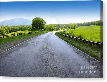 Long And Winding Road Canvas Print by Thomas R Fletcher
