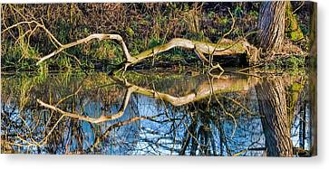 Long Arms Canvas Print