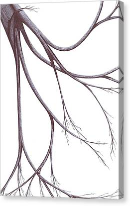 Long Branches Canvas Print by Giuseppe Epifani