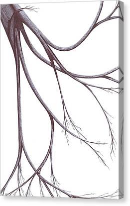Alberi Canvas Print - Long Branches by Giuseppe Epifani