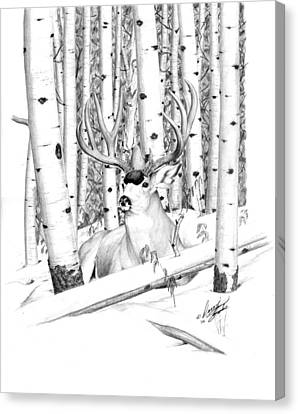 Long Buck Canvas Print