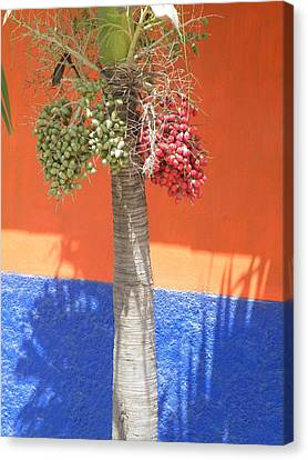Canvas Print featuring the photograph Long Division by Brian Boyle