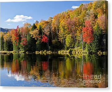 Long Pond Autumn Canvas Print