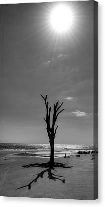 Chrystal Canvas Print - Long Shadow On Jekyll Island In Black And White by Chrystal Mimbs
