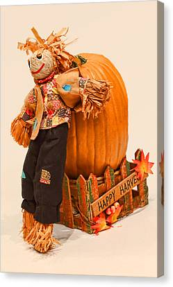Long Tall Scarecrow And Pumpkin Canvas Print