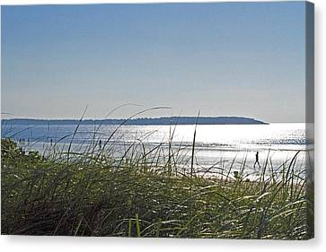 Longing For Summer Canvas Print by John Hoey