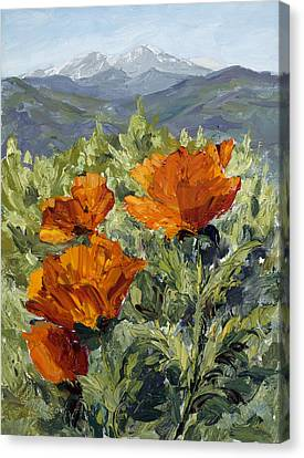 Longs Peak Poppies Canvas Print by Mary Giacomini