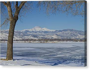 Longs Peaks Winter Landscape View Canvas Print by James BO  Insogna
