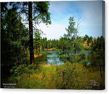 Canvas Print featuring the photograph Longsinceforgotton 004 by Guy Hoffman