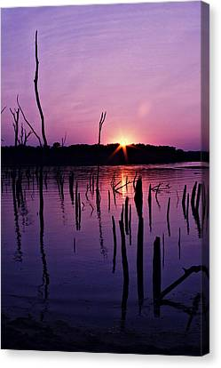 Longview Shore Canvas Print