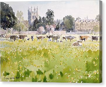 Looking Across Christ Church Meadows Canvas Print by Lucy Willis