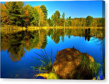Looking Across The Pond Canvas Print by David Simons