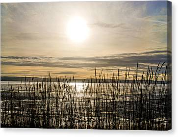 Looking At Wales Through The Grass Canvas Print