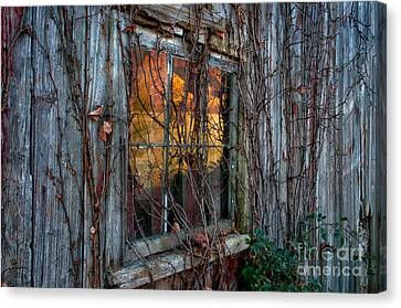 A Century Of Reflections - Thomas Schoellers Rustic's Series Canvas Print by Thomas Schoeller