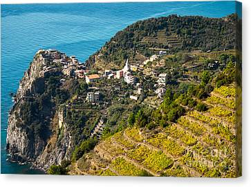 Looking Down Onto Corniglia Canvas Print by Prints of Italy