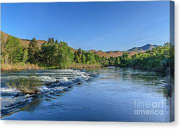 Looking Down The Payette River Canvas Print by Robert Bales