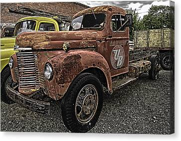 Looking For A New Home Canvas Print by Gary Neiss